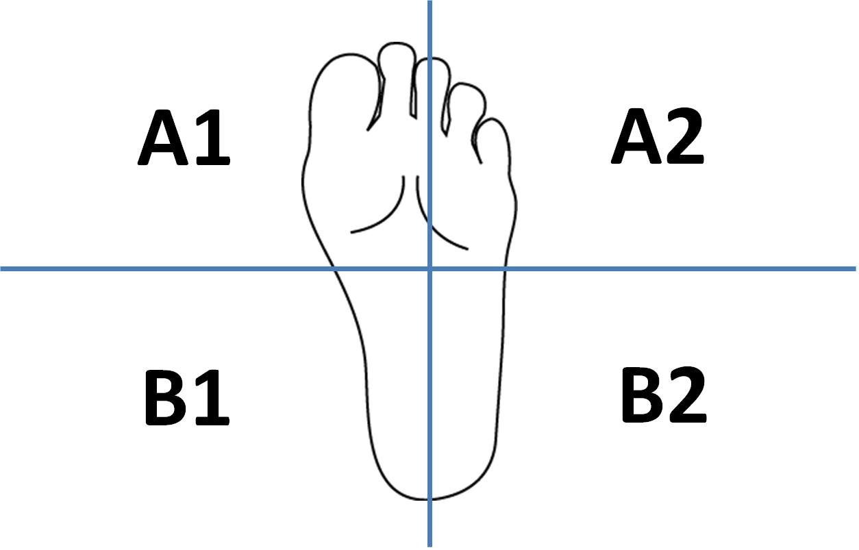 【まとめ】4スタンス理論とは! A1・A2・B1・B2の特徴とチェック方法など