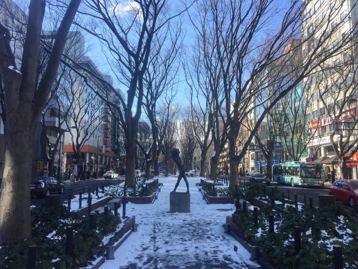 仙台ってそこまで雪降りません! 降雪量・積雪量少なめです